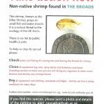 poster about shrimp